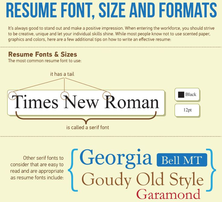 resume   what is the best resume font  size and format