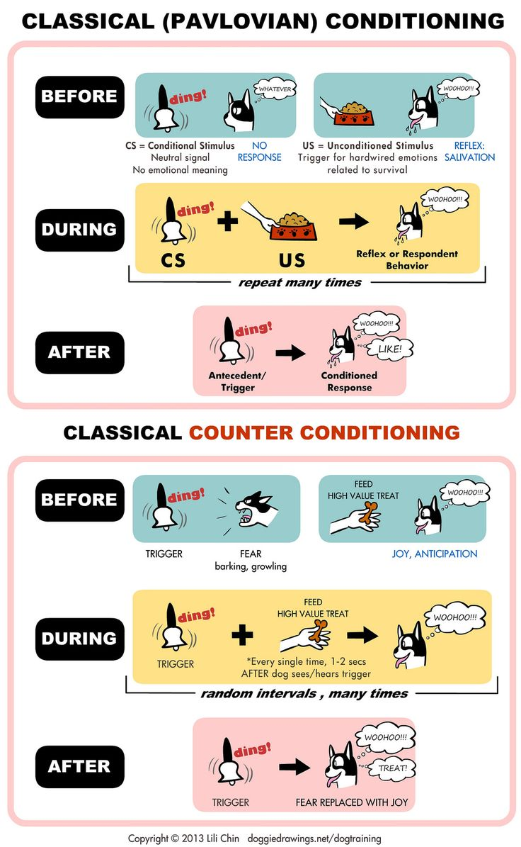 psychology   classical conditioning  u0026 counter conditioning