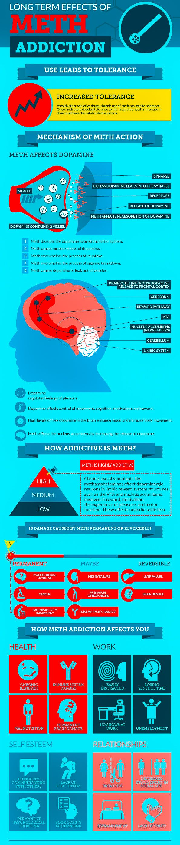 a study on methamphetamine and its effects on the central nervous system of the prenatal mothers and It also has longer-lasting and more harmful effects on the central nervous system that mothers used other drugs study: effects of prenatal methamphetamine.