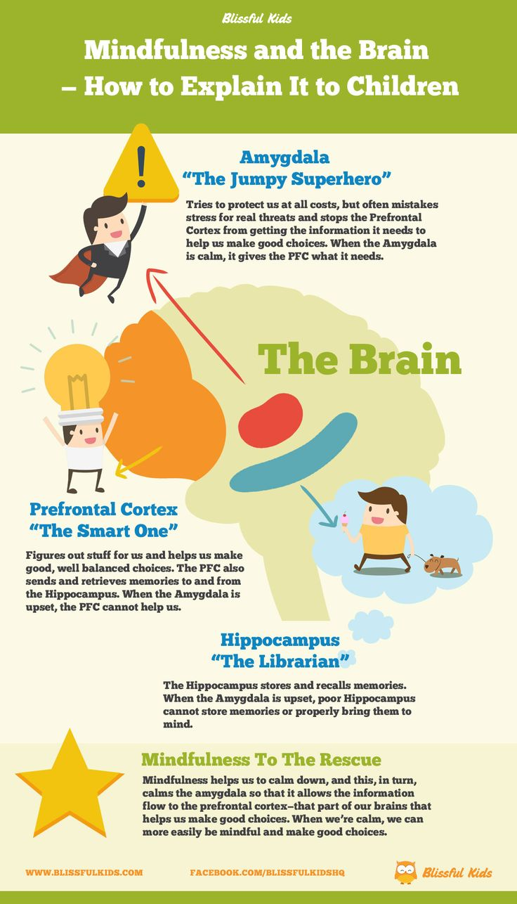 how the human brain stores and retrieves memory essay Lobe for the formation of an explicit memory about the emotional situation and to the amygdala for the formation of an emotional memory when a cue from the.