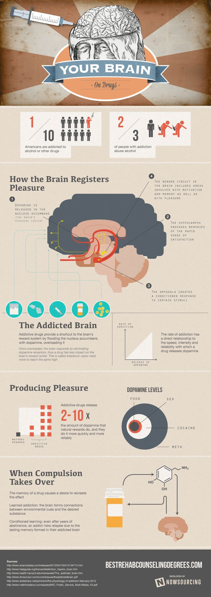 Psychology : Your Brain on Drugs   Visual.ly