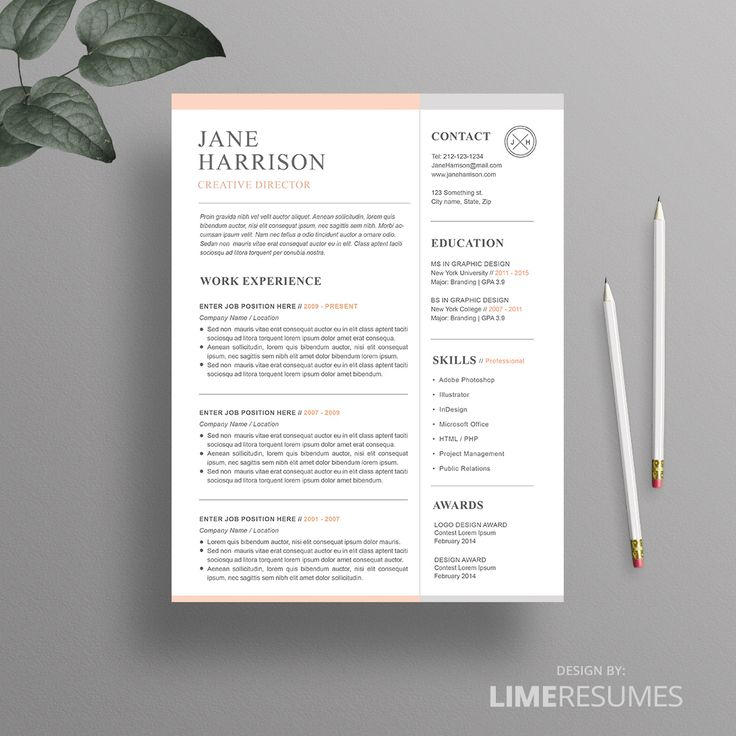 Resume : Professional Resume Template