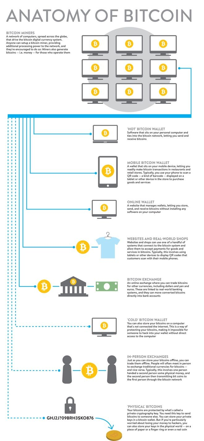 The Anatomy of BITCOIN in one #infographic ! #Marketing #Payment ...